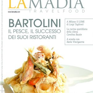 cover-313-1