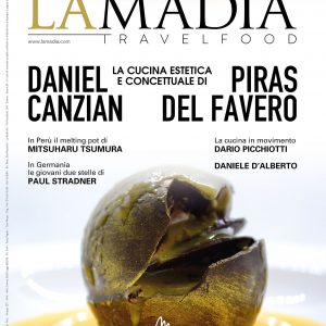 cover-313