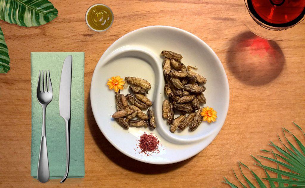 Novel Food: anche i foodie non sono pronti agli insetti sulle tavole