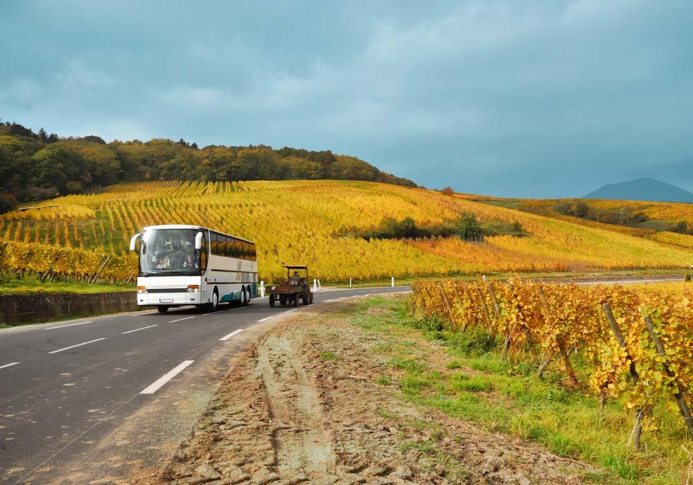 Tour bus sulla strada del Franciacorta