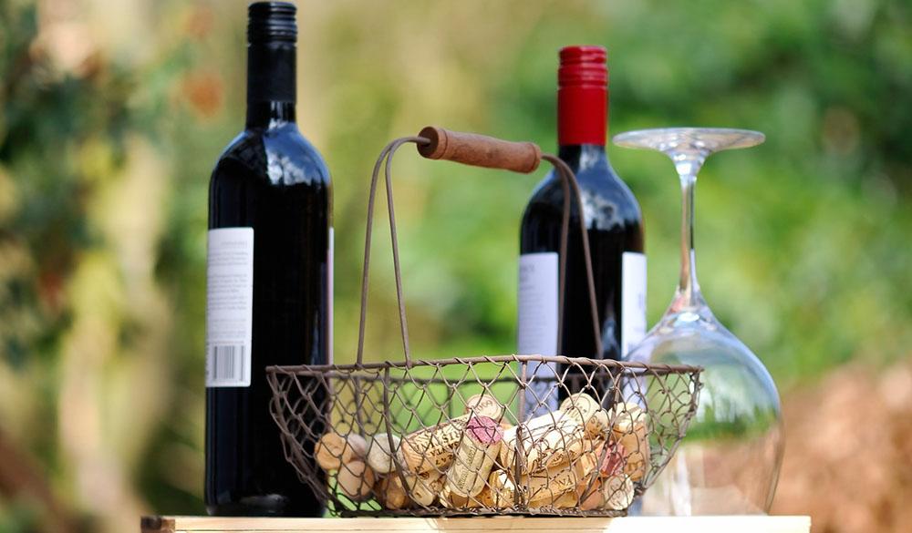 Degustazione Vino Crudo