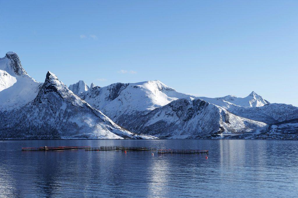 Acquacoltura_Norway