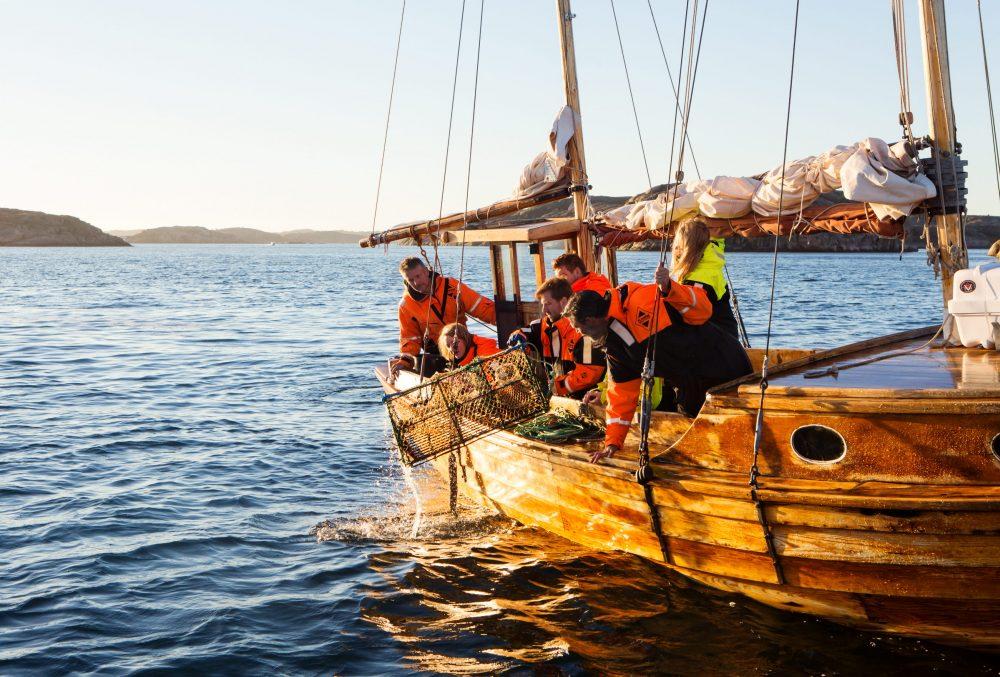 inaugurazione della pesca all'astice in Svezia