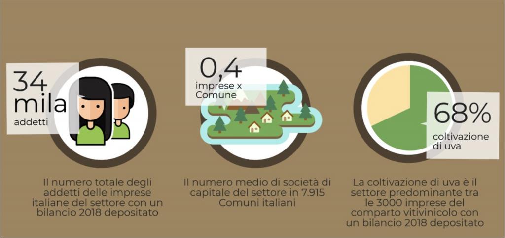 vino e uva - bilancio produttori italiani