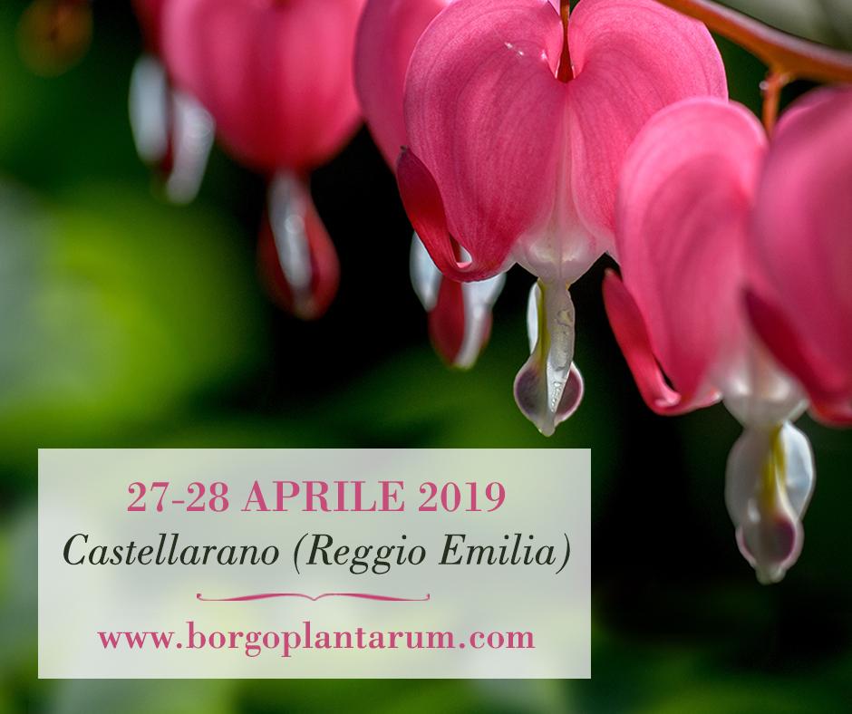 borgo plantarum: Fiori, aromatiche, escursioni nel verde e oggettistica