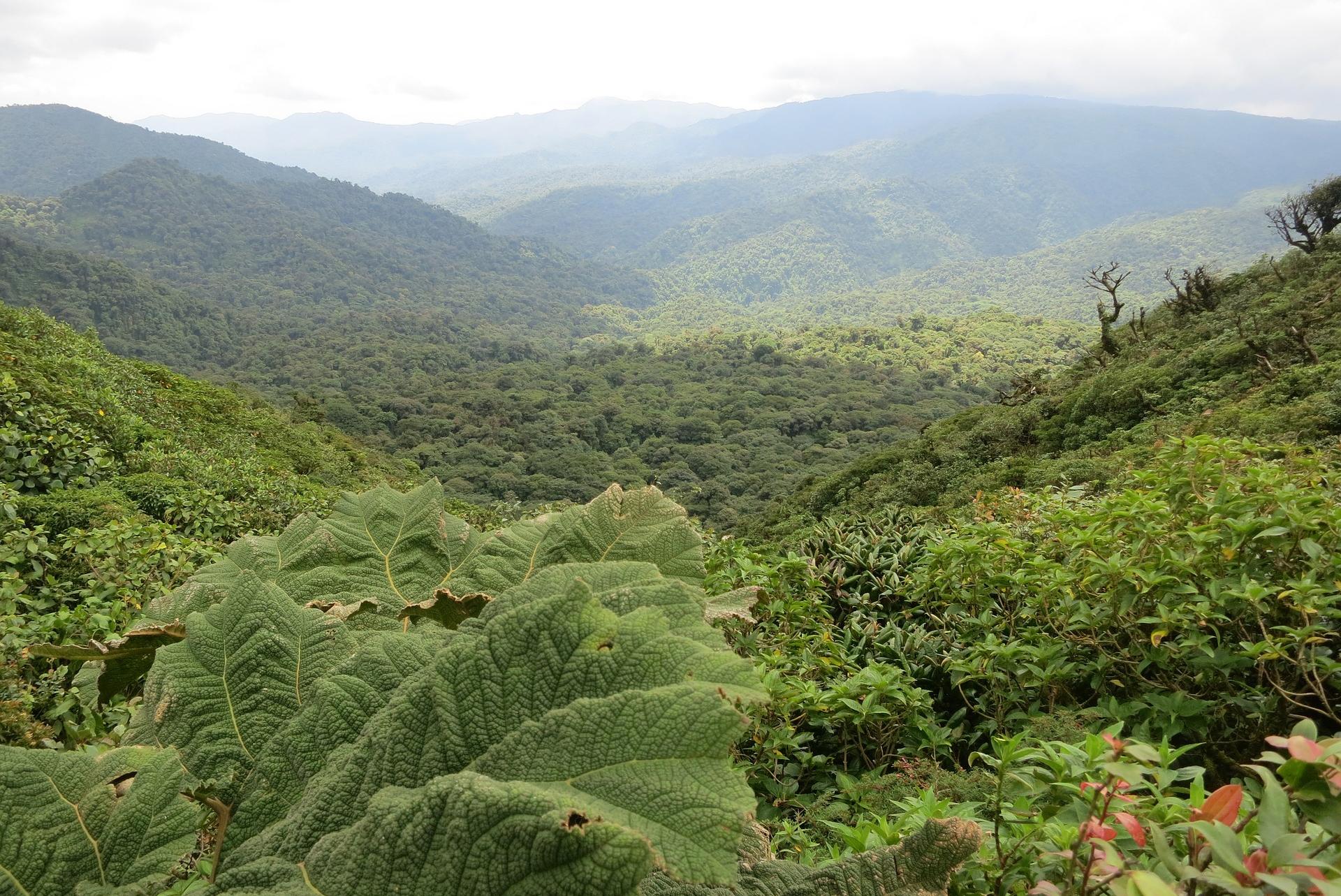 paradisi ecoturistici centroamerica