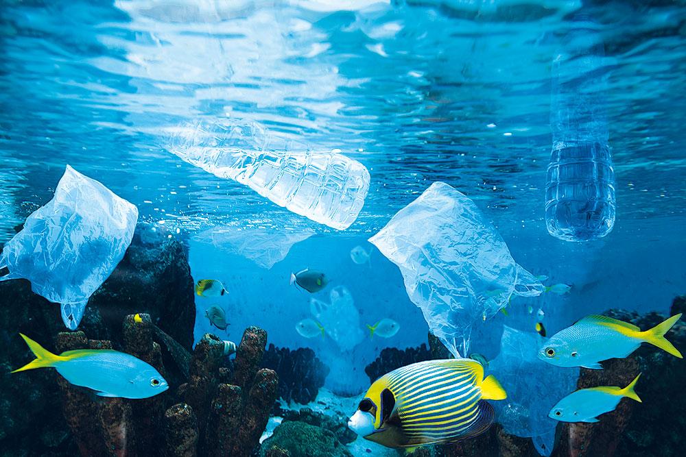 Primo Vercilli ci parla della plastica e del suo impatto sulla salute. In foto, i pesci della barriera corallina che nuotano tra buste e bottiglie di plastica