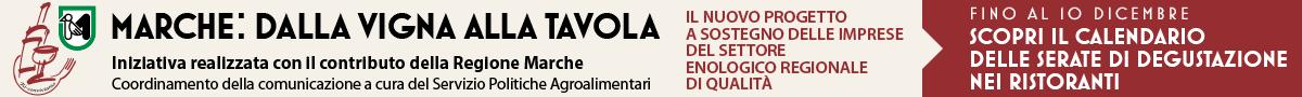 Prog-Marche-banner-alto-Madia